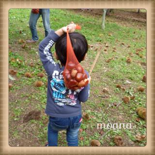 image-20130930082131.png
