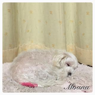 image-20150103221946.png